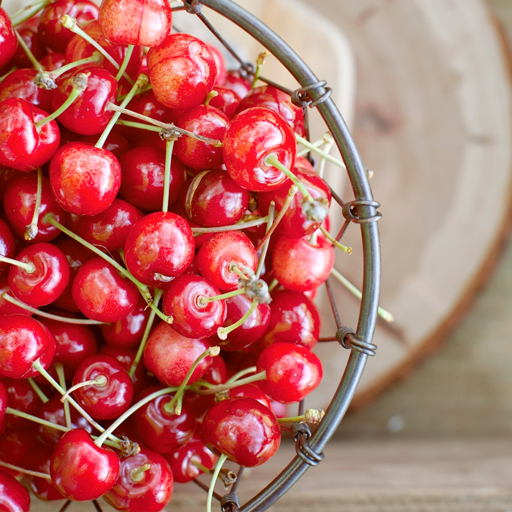 Plenty & Grace Cherries Surrey Fraser Valley British Columbia Canada